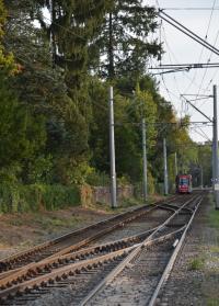Gleis- und Fahrbahnsanierung in den Herbstferien