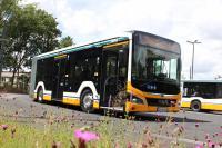 MAN-Gelenkbus an der Haltestelle Böllenfalltor in Darmstadt